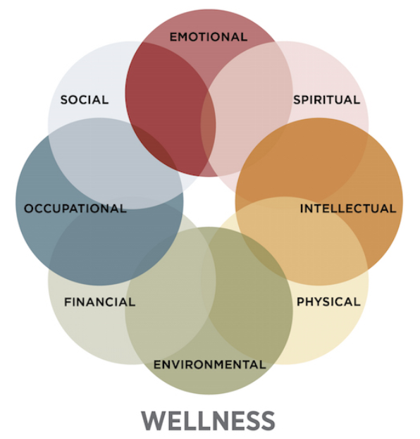 Well-being & The Messages that Shape Us